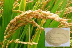 100% de adubo orgânico solúvel em água amarelada de aminoácidos em pó de arroz