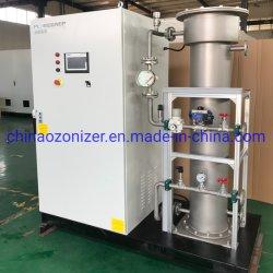400g-500g sistema generador de ozono para el sector privado y piscina de tamaño del hotel/SPA