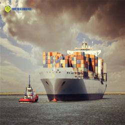 El flete marítimo el envío de contenedores FCL LCL de Guangzhou, Shenzhen, Shanghai, Qingdao Xiamen a Sudáfrica