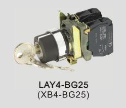 Xb4-Bg25 누름단추식 전쟁 스위치, 세륨은 고품질 누름단추식 전쟁 스위치, ISO9001에 의하여 입증된 누름단추식 전쟁 스위치, 중요한 자물쇠 누름단추식 전쟁 스위치 증명했다