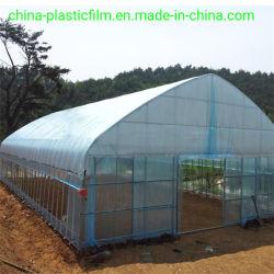 Resistente a UV da película de LDPE 200 mícrons de plástico com efeito de estufa para a agricultura