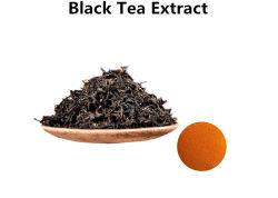 Teaflavinas en polvo extracto de té negro
