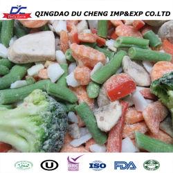 Bio Großhandel gefrorenes Gemüse mit Mais, Erbsen und / gefrorenen Mais