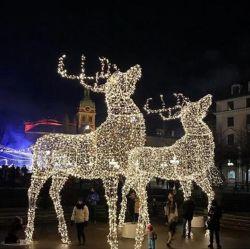 عيد ميلاد المسيح واضحة أيّل إنارة [لد] متسلسل أضواء خيط