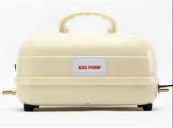 Petite AC-DC la taille du ménage de la pompe de gavage de biogaz Usine de biogaz