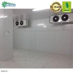 냉동 둥근 통 튀니 피시 슈퍼마켓 콜드 룸 유형 냉장 보관 냉동고 손잡이의 보행