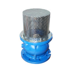 産業鋳鉄は無声小切手弁水ポンプシステムのためのフランジを付けたようになった