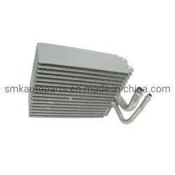 De Evaporator van a/c voor de Vervoerder T5 7L0820105, 7L0-820-105A, 7L0-820-105b, 7p0-820-101b van VW