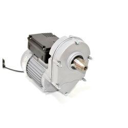 550W de omgekeerde AC Elektrische Motor van de Rem van het Toestel
