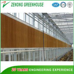 Professional Gases de Efecto Invernadero húmedo cortina para bajar la temperatura