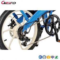 安い小型折りたたみの電気自転車の小さい電気バイクWhosaleを折る電気バイクの自転車Eのバイク
