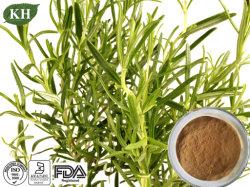Напряжение питания на заводе 100% натуральные органические кислоты поставщика/розмарин извлечения производителя