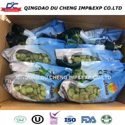 IQF gefrorene Fava Bohnen (abgezogen)/gefrorene Saubohnen--Hochwertig!