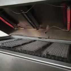 Z0546 Vorm van de Chocolade van het Polycarbonaat de Plastic voor het Industriële Polycarbonaat van de Vorm van de Chocolade van het Gebruik