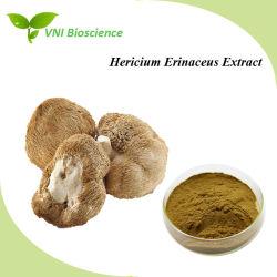 ISOは100%自然なHericiumのErinaceusのエキスを胃のためのそのよい証明した