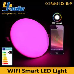 RGB 24W Brede Slimme LEIDENE van het Voltage Licht van het Comité