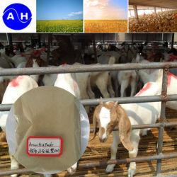Pó de aminoácidos de origem vegetal para a Alimentação Animal