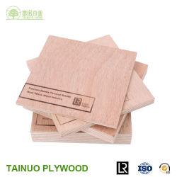 3mm/6mm/9mm/12mm/15mm/18mm ein Grad-wasserdichtes Furnierholz für Aufbau