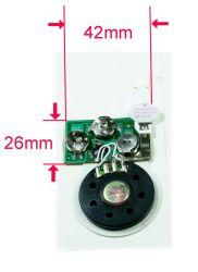 De Correcte Module van de Kaart van de groet met de Sensor van de Motie