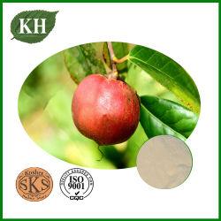 Natrual Camellia Oleifera té Extracto de semillas de saponinas el 90% para cremas