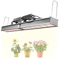 2020 de efecto invernadero comercial mejor luz crecer Espectro Samsung 301b crecer la luz LED para interiores, plantas medicinales