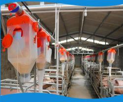 El uso de los lados de cerdo seca/Alimentador de Doble Alimentador húmedo// Silo de alimentación de la canaleta de cerdo