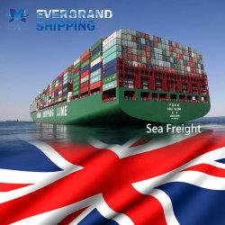 Oceano fiável e transporte de frete marítimo da China para o Reino Unido/Felixstowe/Manchester e Liverpool/Southampton