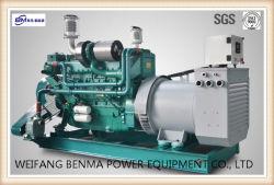 300 KVA-Marinedieselgenerator-Set mit Shanghai-Motor