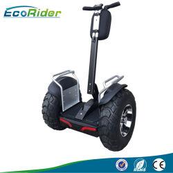 L'auto équilibre Ecorider deux roues scooter avec ce