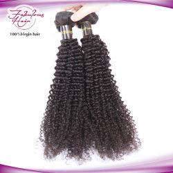 يمكن نمذجة الشعر البرازيلي عذارى الشعر