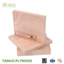 [أا] [إ0] درجة مسيكة بحريّة خشب رقائقيّ صاحب مصنع في الصين