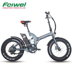 Volle Aufhebung, die elektrisches Fahrrad mit fettem Gummireifen (TDN05Z-fat, faltet)