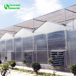 Настраиваемые экономичные выбросов парниковых газов из поликарбоната с гидропоники системы сельскохозяйственного растущей томатов и огурцов