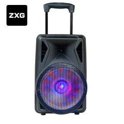 Carrito de bocinas de audio Karaoke Bt altavoz portátil fuerte amplificador de voz