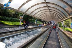 Toyon commercial sûr et confortable des escaliers roulants Transports publics