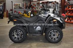 Meilleur Prix de haute qualité Le EPS MXU 700I'euro ATV