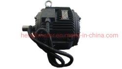 고품질 핫 셀링 강력한 파워와 낮은 소음 3 CE를 사용하는 고효율 위상 유도 전기/전기 AC 모터