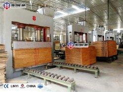 Máquina Pre-Press/Cold Pressione para contraplacados