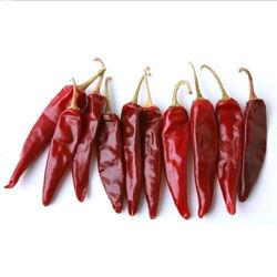 Оптовые цены на Hq сушеного красного перца чили