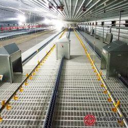 Completare il sistema della catena del pollo del selezionatore della strumentazione dell'azienda avicola