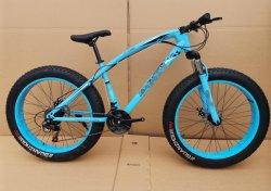 Bicicletta grassa della montagna del pneumatico di 26 formati con una bici delle 4.0 gomme