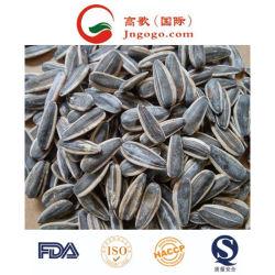 Semi arrostiti e salati di buon sapore di girasole per esportare