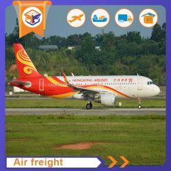 Esperto nella soluzione di logistica da trasporto veloce di servizio della spedizione delle merci aviotrasportate dalla Cina in Polinesia francese Papeete