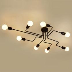 型の屋内ホーム照明設備(WH-LA-12)のためのレトロの産業天井の照明