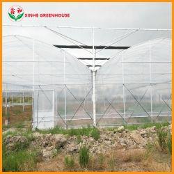 Лидер продаж среди сельскохозяйственных коммерческих Multi-Span пластиковую пленку выбросов парниковых газов для выращивания овощей растет