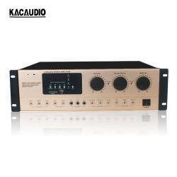 250W * 2 공용 주소 시스템(USB/BT/FM/SD USB 믹서 가라오케 앰프 포함