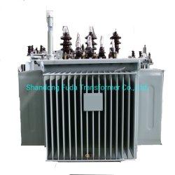 100kVA 11kv immergé transformateur de puissance d'huile/transformateur de distribution