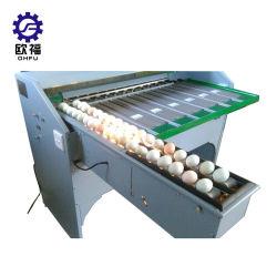 Ovos de galinha de alta qualidade Máquina de ordenação