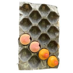 Het verschillende Dienblad van het Fruit van de Avocado van de Granaatappel van de Kiwi van het Kaliber Pulp Gevormde