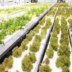 温室効果ヒーターシステム - 水ヒーター装置 / ボイラー